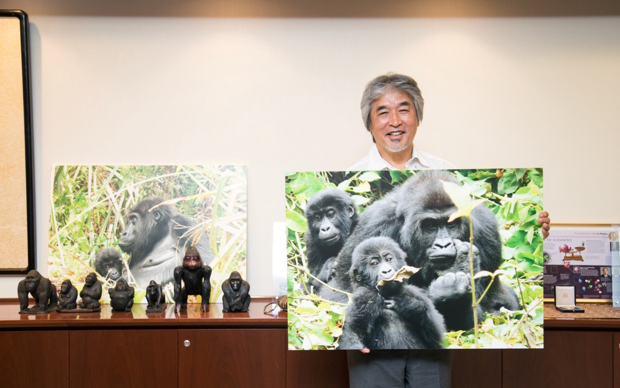 Professor Juichi Yamagiwa, holding a large picture of three gorillas in the wild