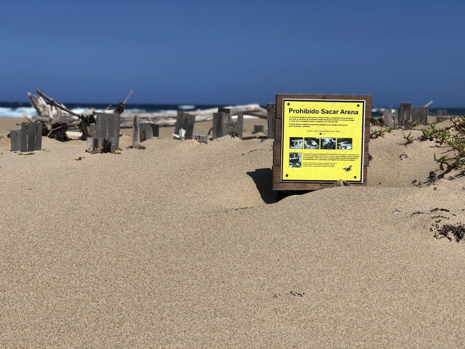 Perched in an active dune, a yellow sign warns agains the extraction of sand from the area.