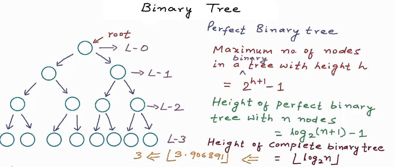 Binary Tree Interview Questions and Practice Problems