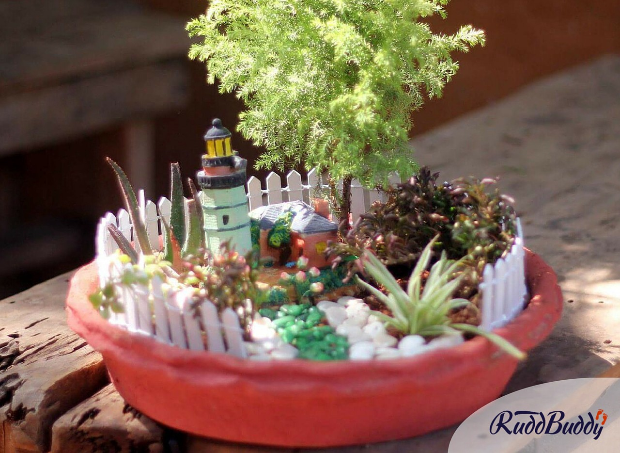 Miniature Gardens: New gifting trend in the city