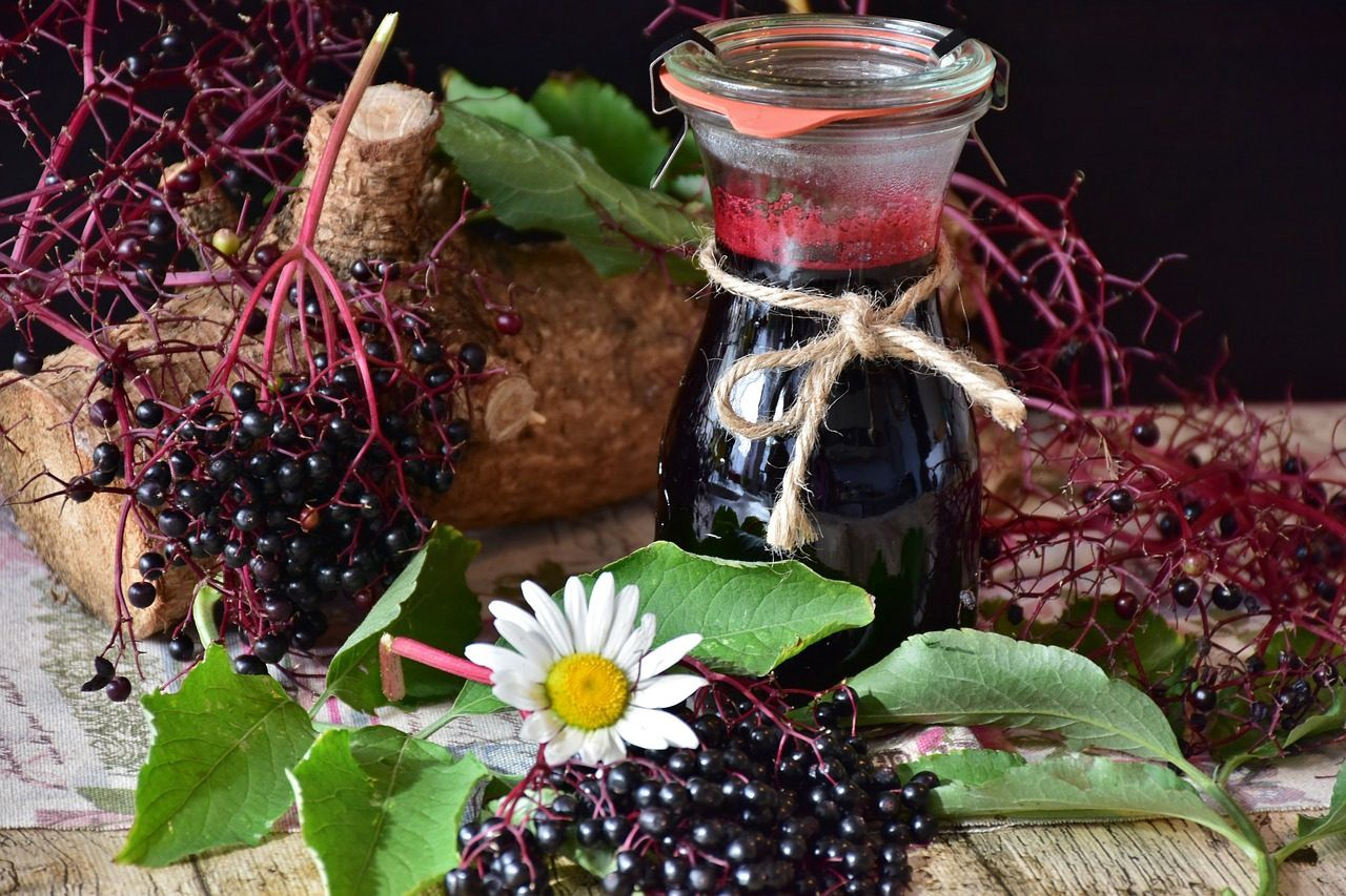 What Can Home-Made Elderberry Syrup