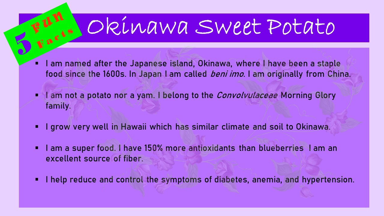 A purple-toned infographic with the heading: 5 Fun Facts Okinawa Sweet Potato.
