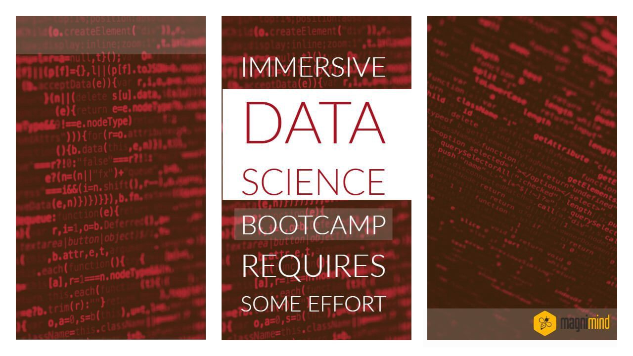 Immersive Data Science Bootcamp Requires Some Effort
