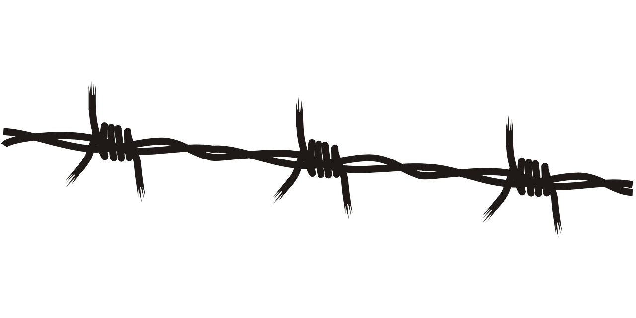 Black and white image of barbed wire to represent a boundary