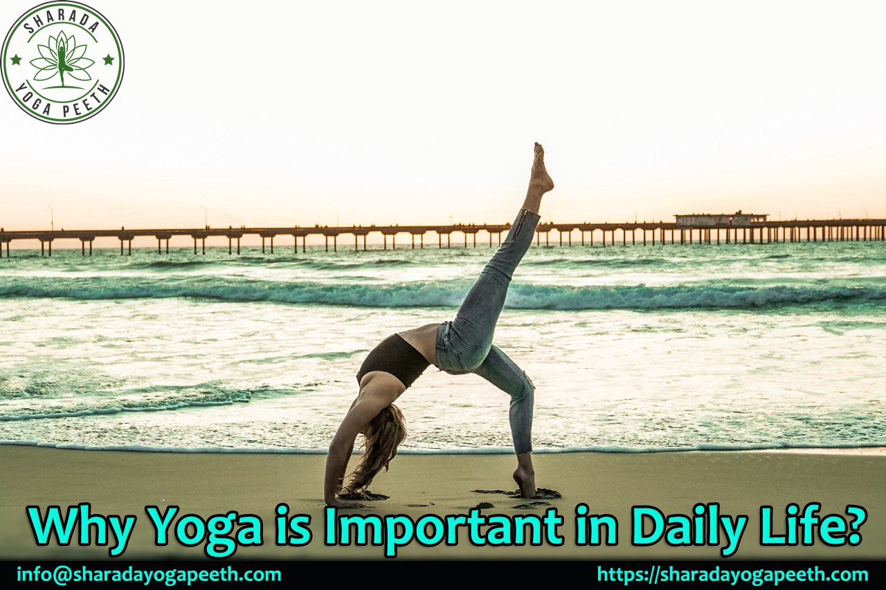 Why Yoga Is Important In Daily Life By Sharada Yoga Medium
