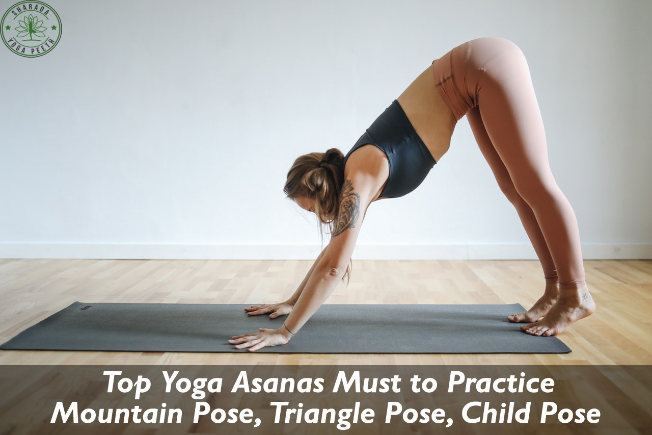 Top Yoga Asanas Must To Practice Yoga Is A Great Exercise That You Can By Hema Bisht Medium