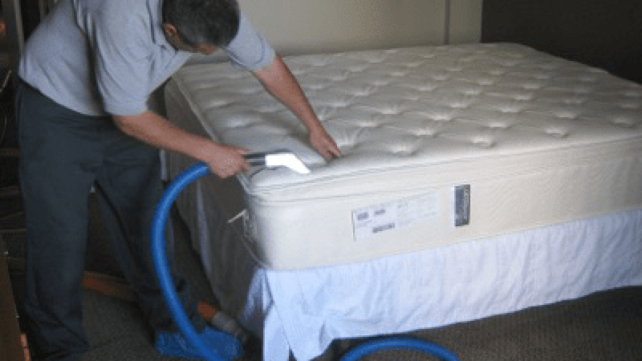 How To Clean The Yellow Stain On The Mattress By Major Carpet Cleaners Medium