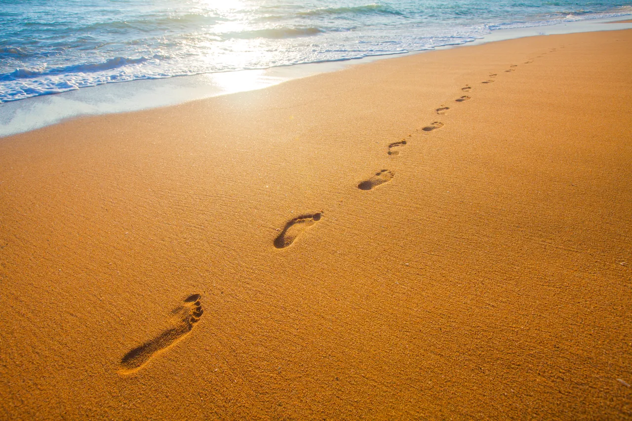 Footprints in the Sand. In every house I lived in growing up… | by ...