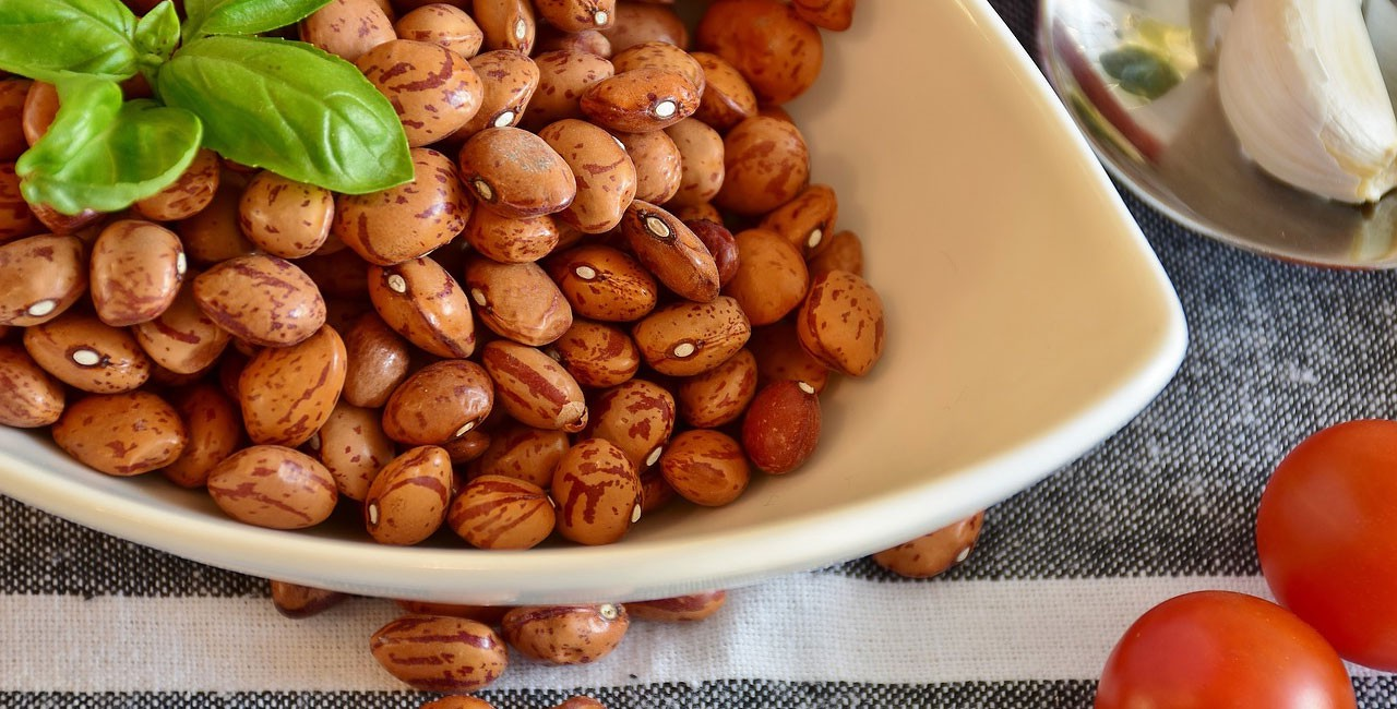 Dried pinto beans in a dish on a table with a sprig of mint, ripe tomatoes, and a clove of garlic on a spoon