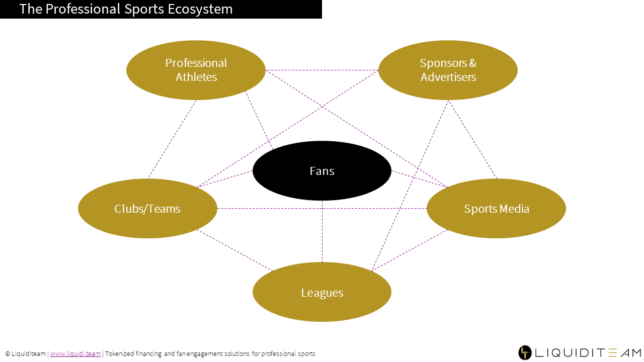 Visual depiction of the professional sports ecosystem