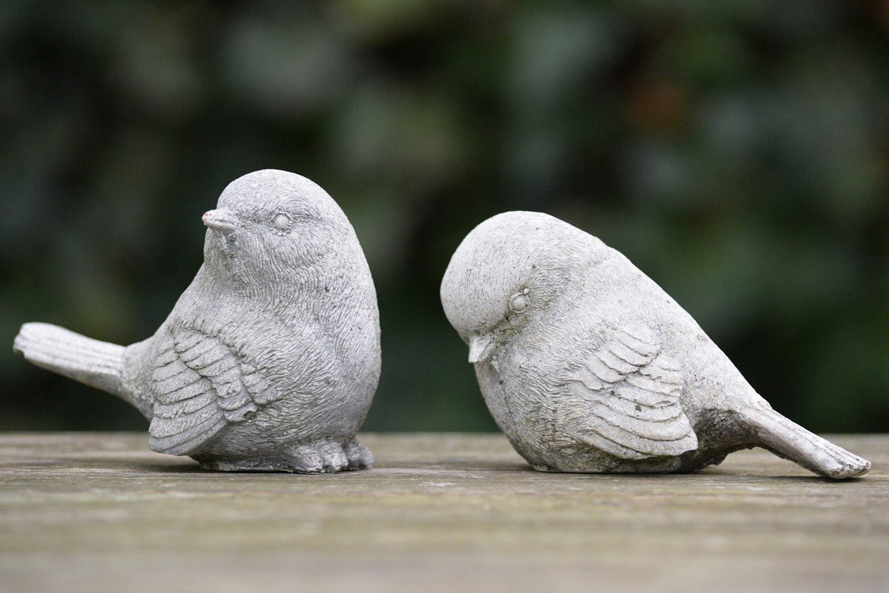 Two birds: one is feeling rejected by the other
