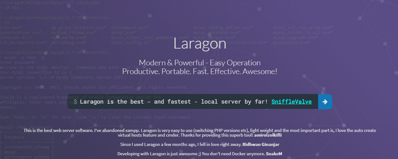 Add different PHP versions to your Laragon Installation