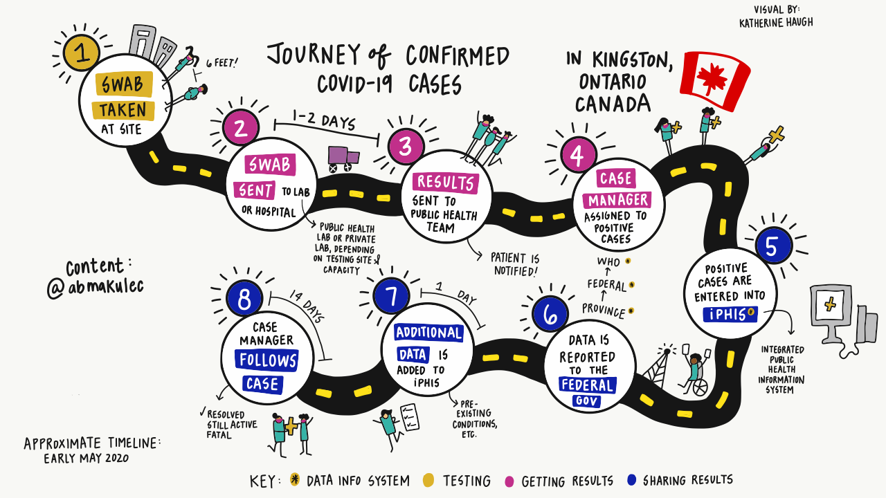 8 step process for collecting COVID-19 case data in Kingston, Ontario, Canada