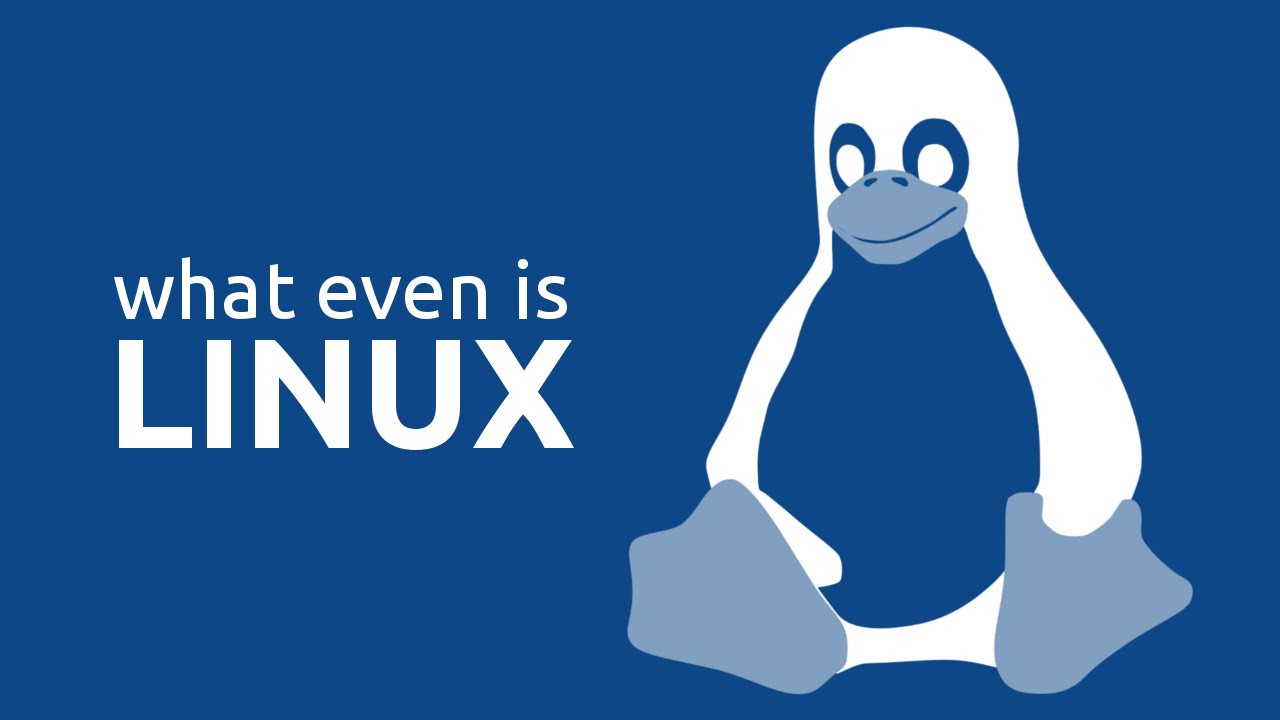 Linux under the hood: What happens when you type ls -l