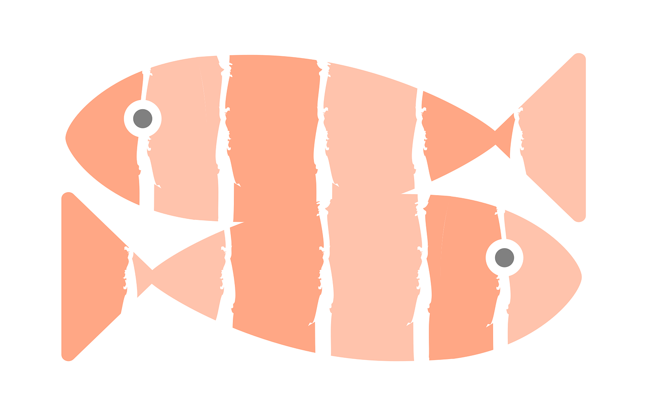 Vector graphic of two salmon fish