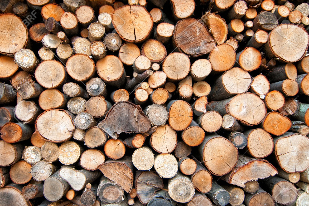 Log Management: Graylog vs ELK - JetRuby
