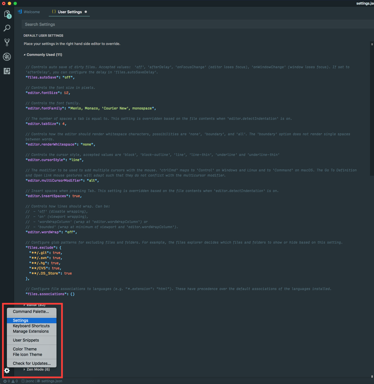 Essential Customizations for VSCode - Echobind