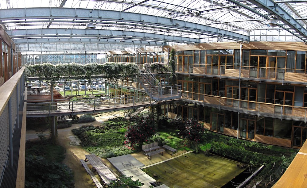 Astounding Building Your Own Diy Rooftop Greenhouse Is Hard Nyu Local Home Remodeling Inspirations Genioncuboardxyz