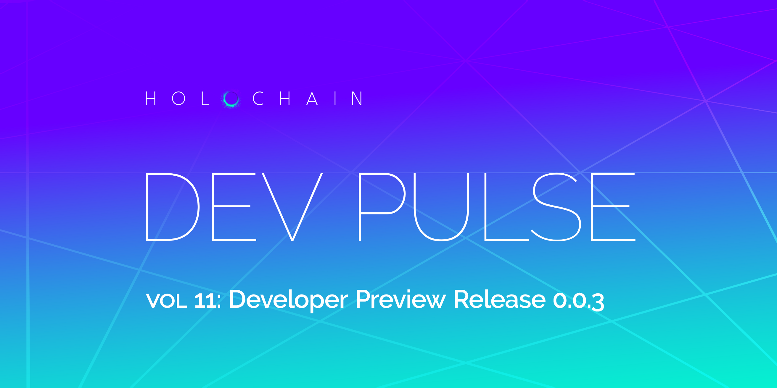 Developer Preview Release 0 0 3: Enabling P2P Networks for hApp Users