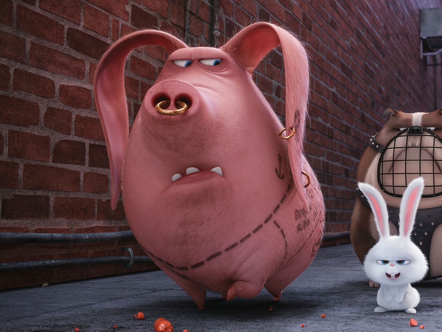 The Secret Life of Pets wasn't lying: People have tattooed pigs for