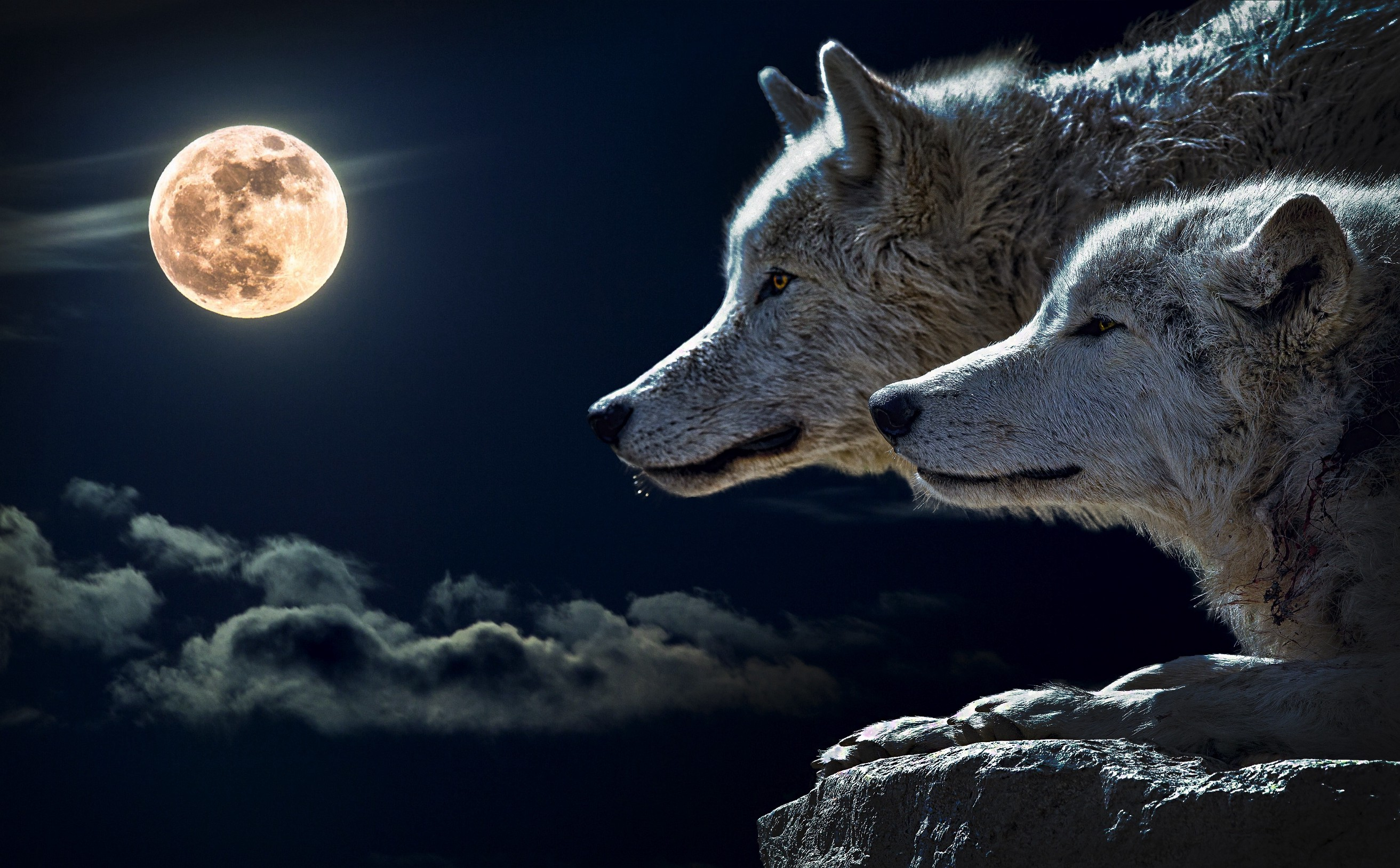 You Know That Charming Little Story About the Two Wolves? It's a Lie