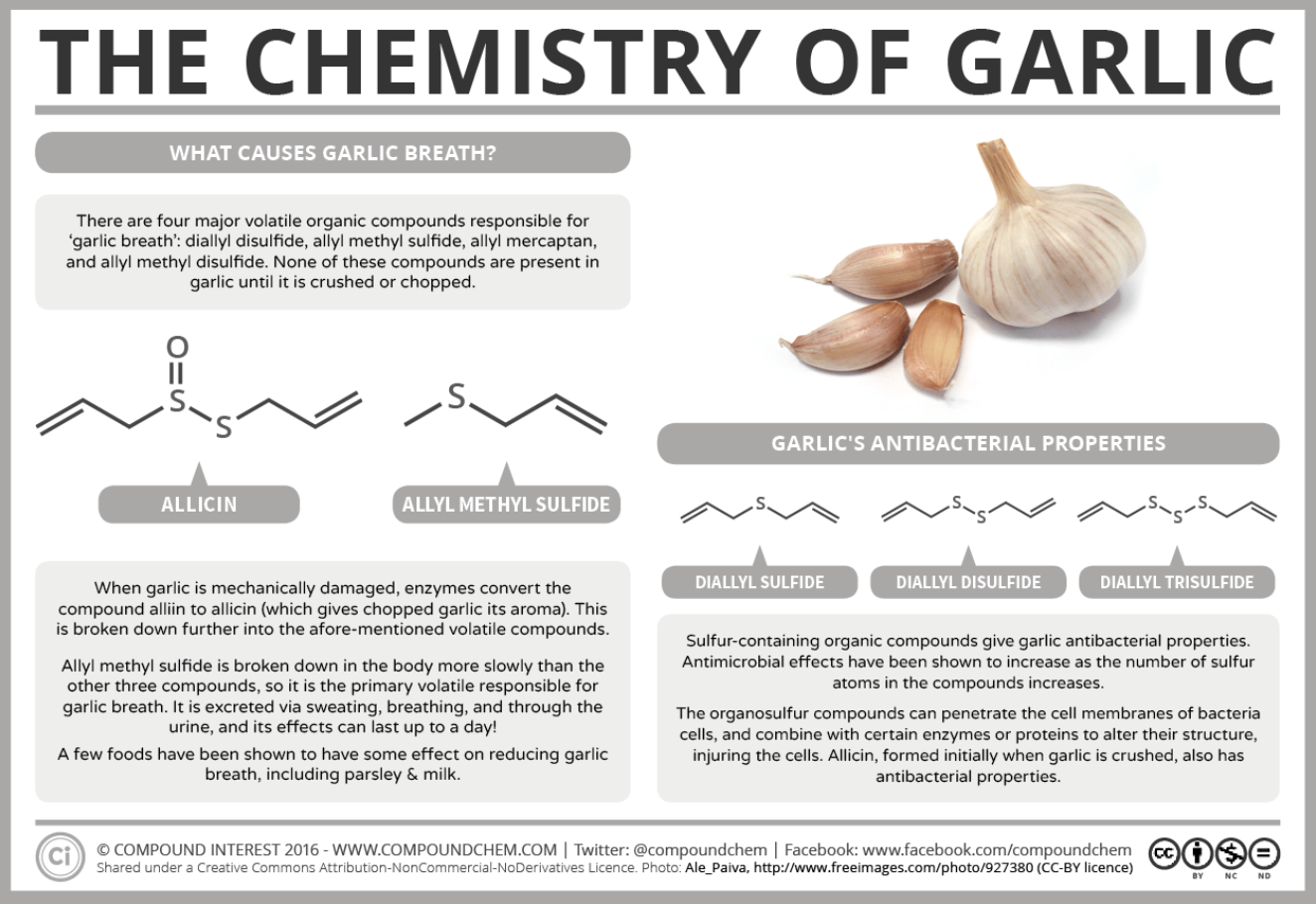 the surprising health benefits of eating raw garlic