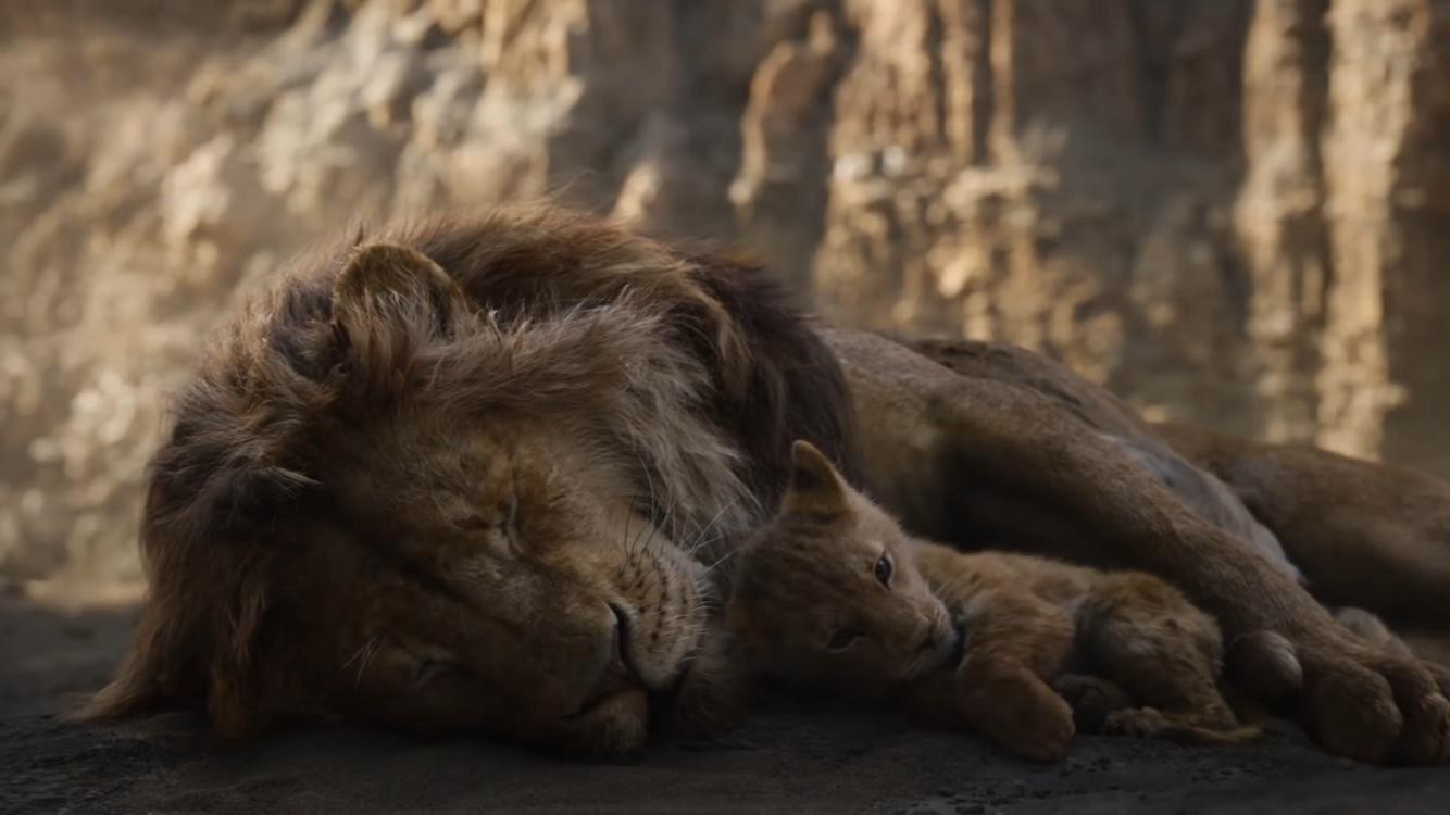 Download The Lion King 2019 Of Jungle Google Drive