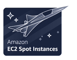 The definitive guide to running EC2 Spot Instances as