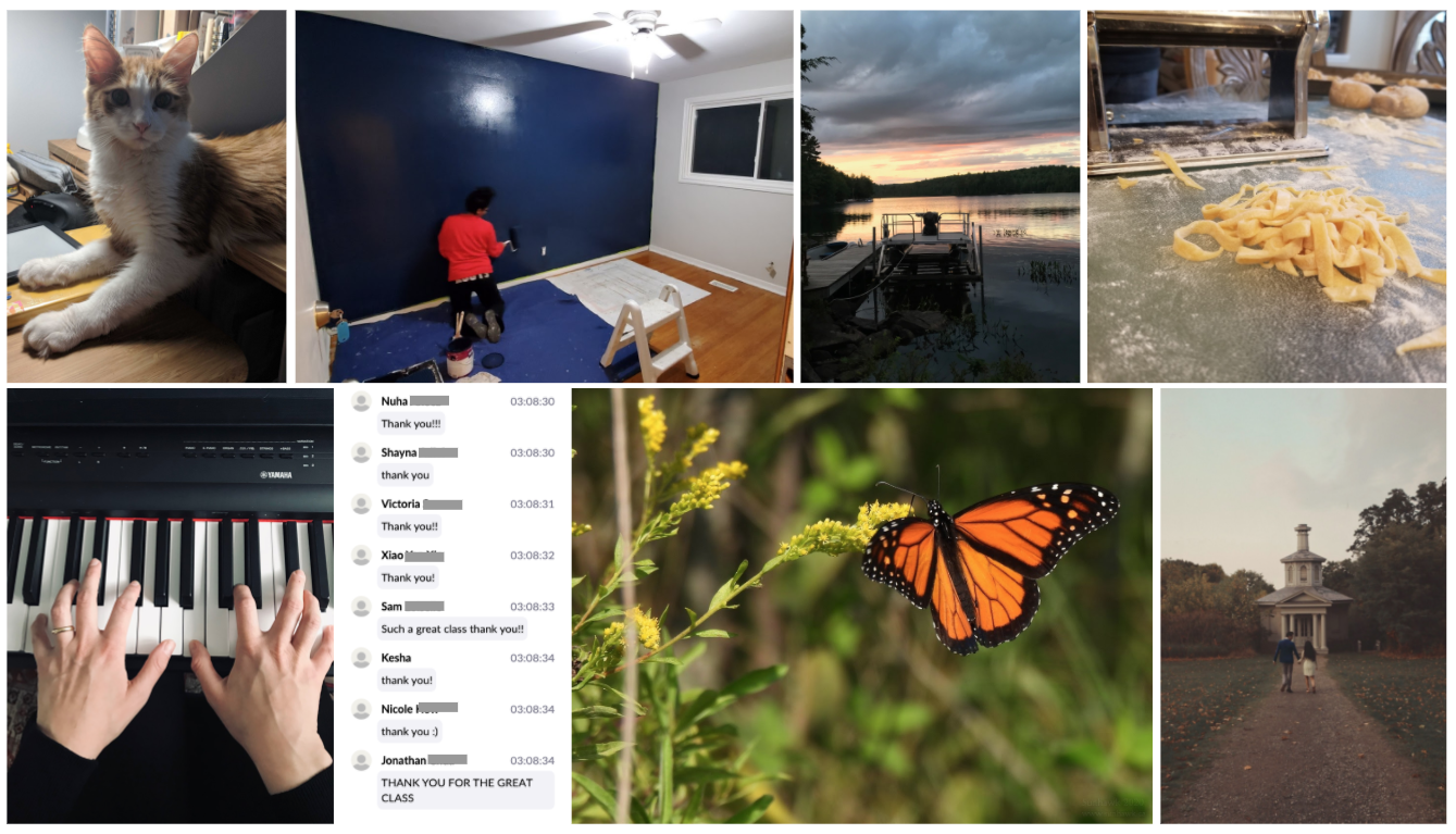 Cat, home renovation, cottage dock, handmade pasta, piano playing, monarch butterfly, engagement photo