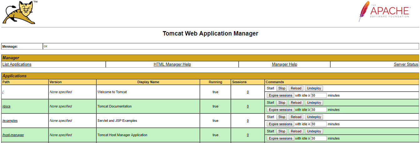 Deployment of Spring MVC app on a local Tomcat server for