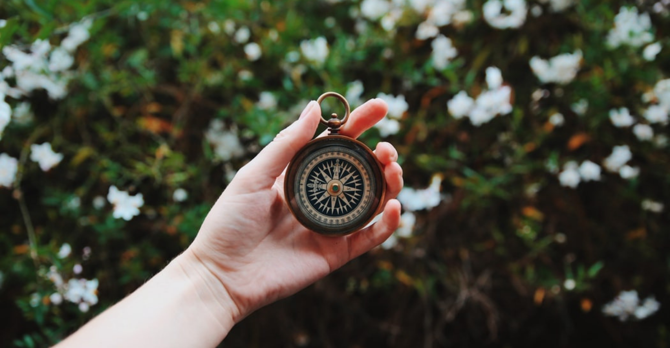 Hand holding a compass with rosebush background