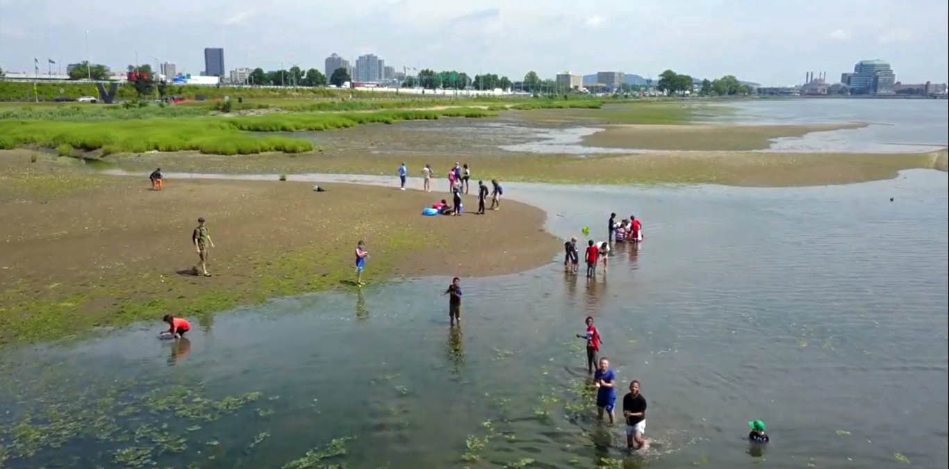 Adults and kids standing on the banks of a marsh and wading in the water, exploring the nature preserve.