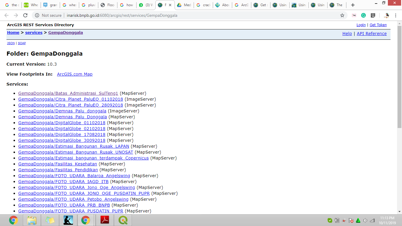 The example of REST Services Directory that is used by BNPB (Badan Nasional Penanggulangan Bencana)