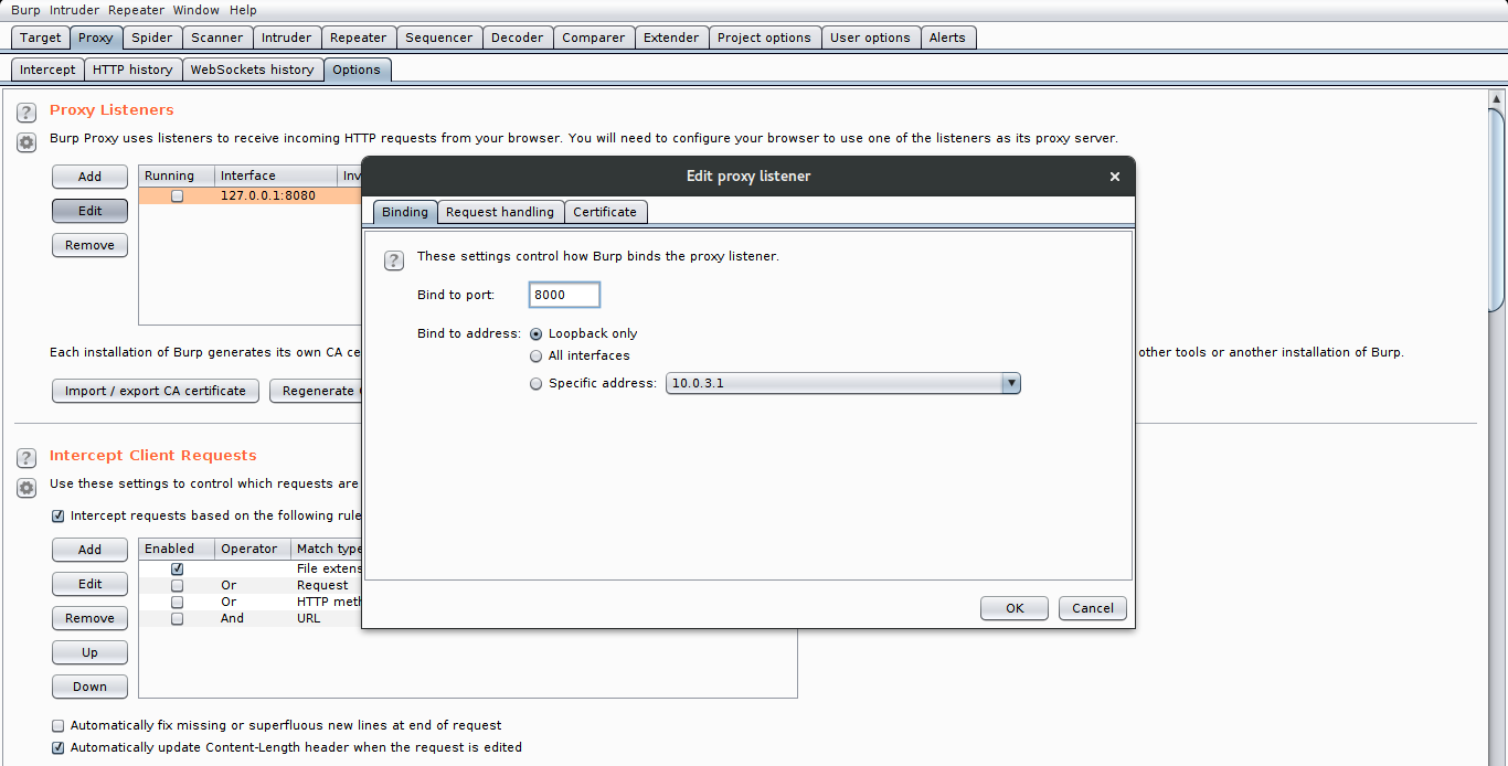 Setting up Burp Suite and OWASP WebGoat in Linux for