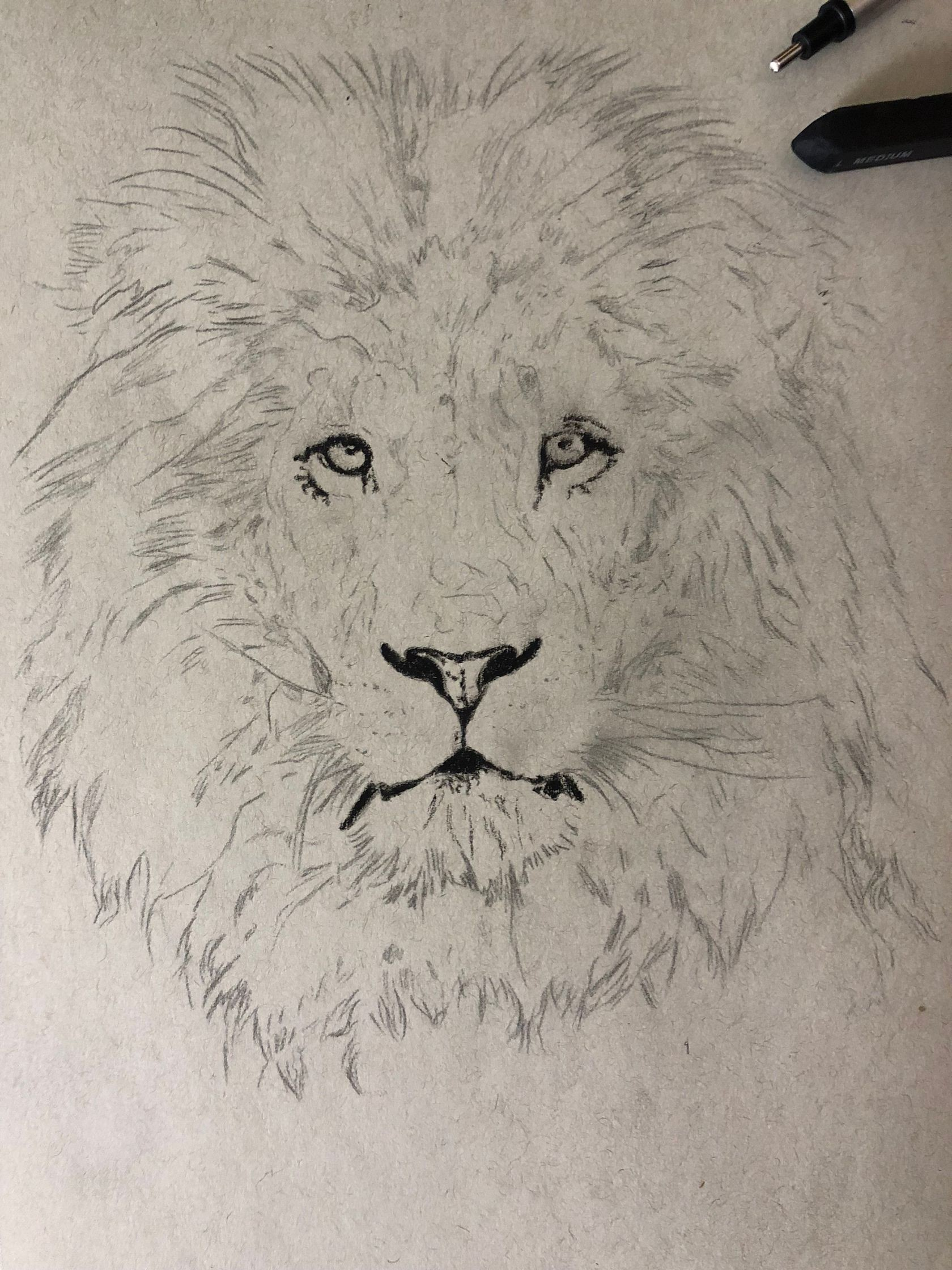 Drawing A Lion Realistic Art With Charcoal By Simon Medium Similar with lion outline png. drawing a lion realistic art with