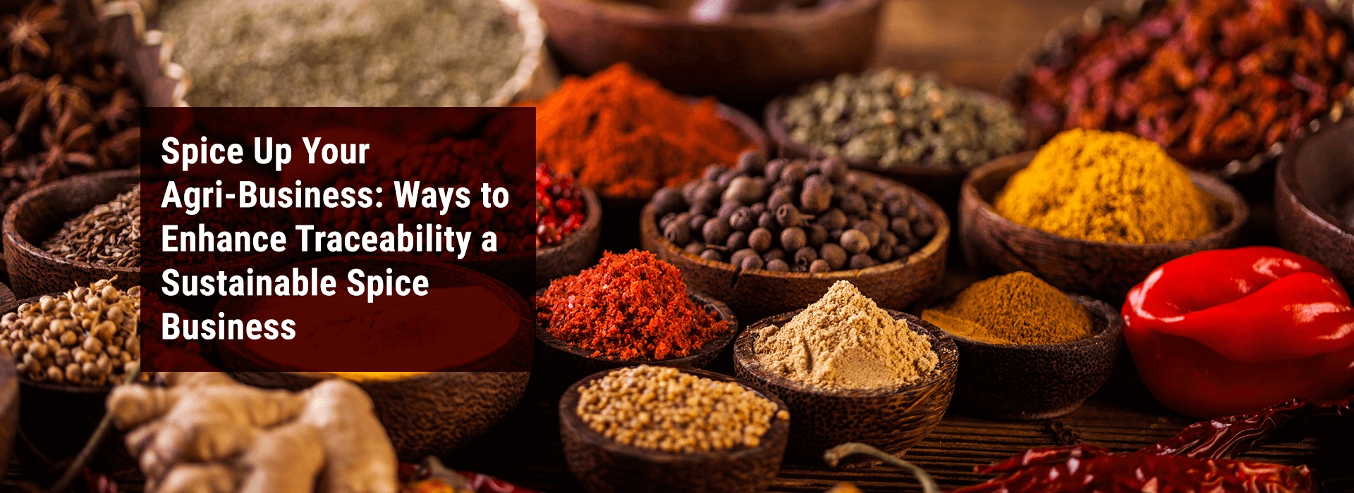Banner Image: Spice Up your Agri-Business: Ways to Enhance Traceability a Sustainable Spice Business