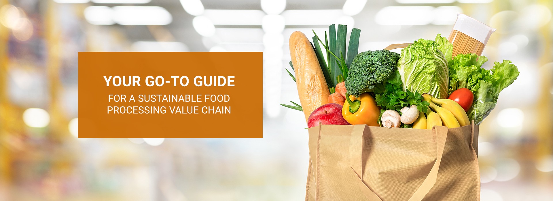 """Banner Image: """"Your go-to guide for a sustainable food processing value chain"""""""