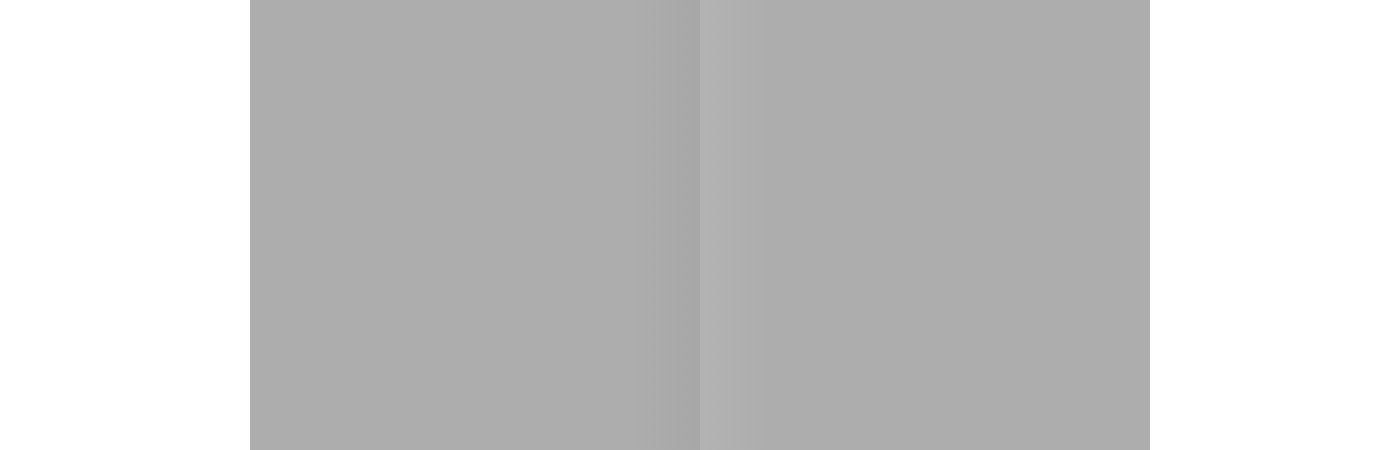 Two adjacent grey squares. The one to the left looks darker, but they re the same colour.