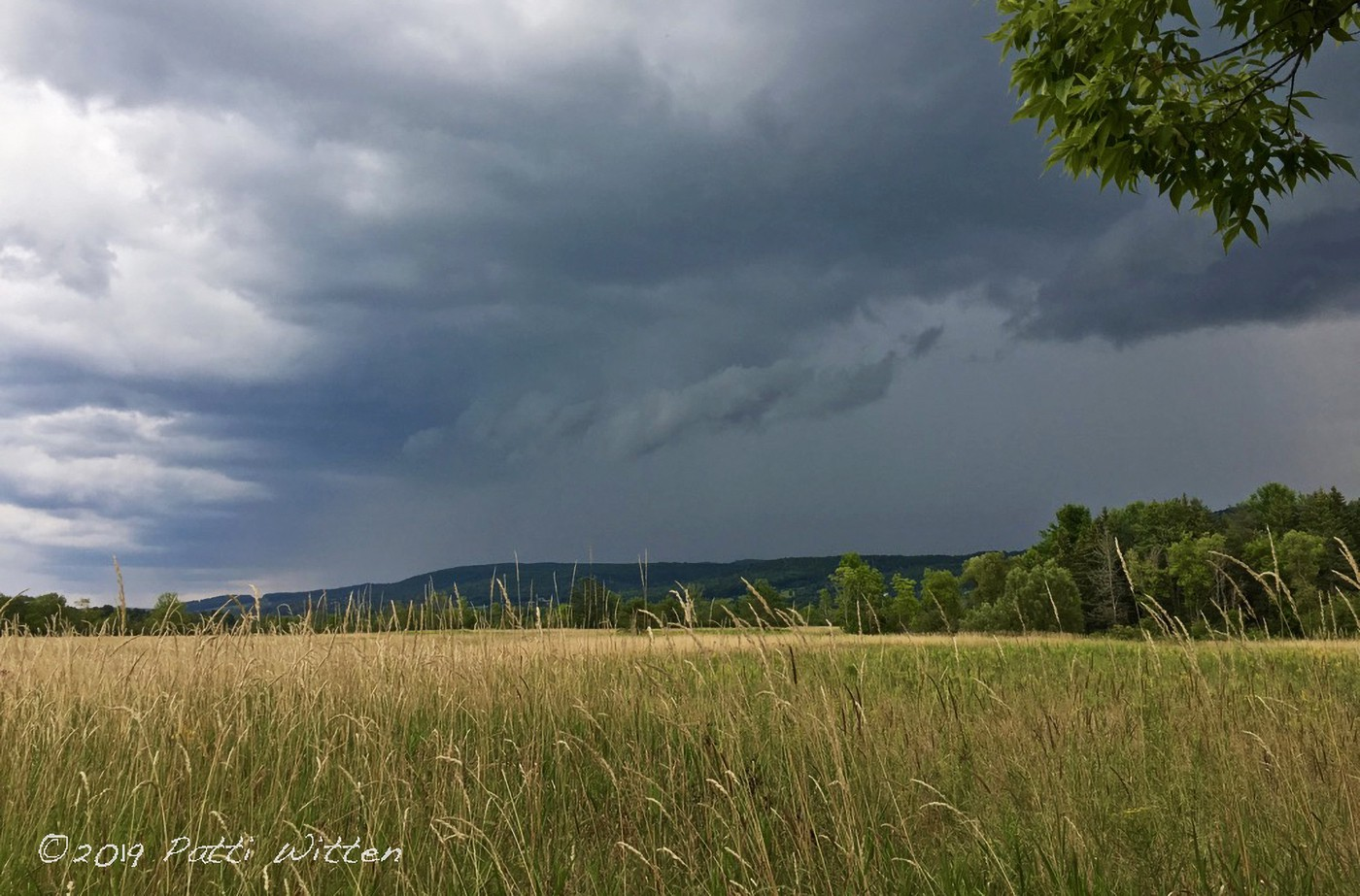 Dark clouds over a hillside and field of yellow grass.