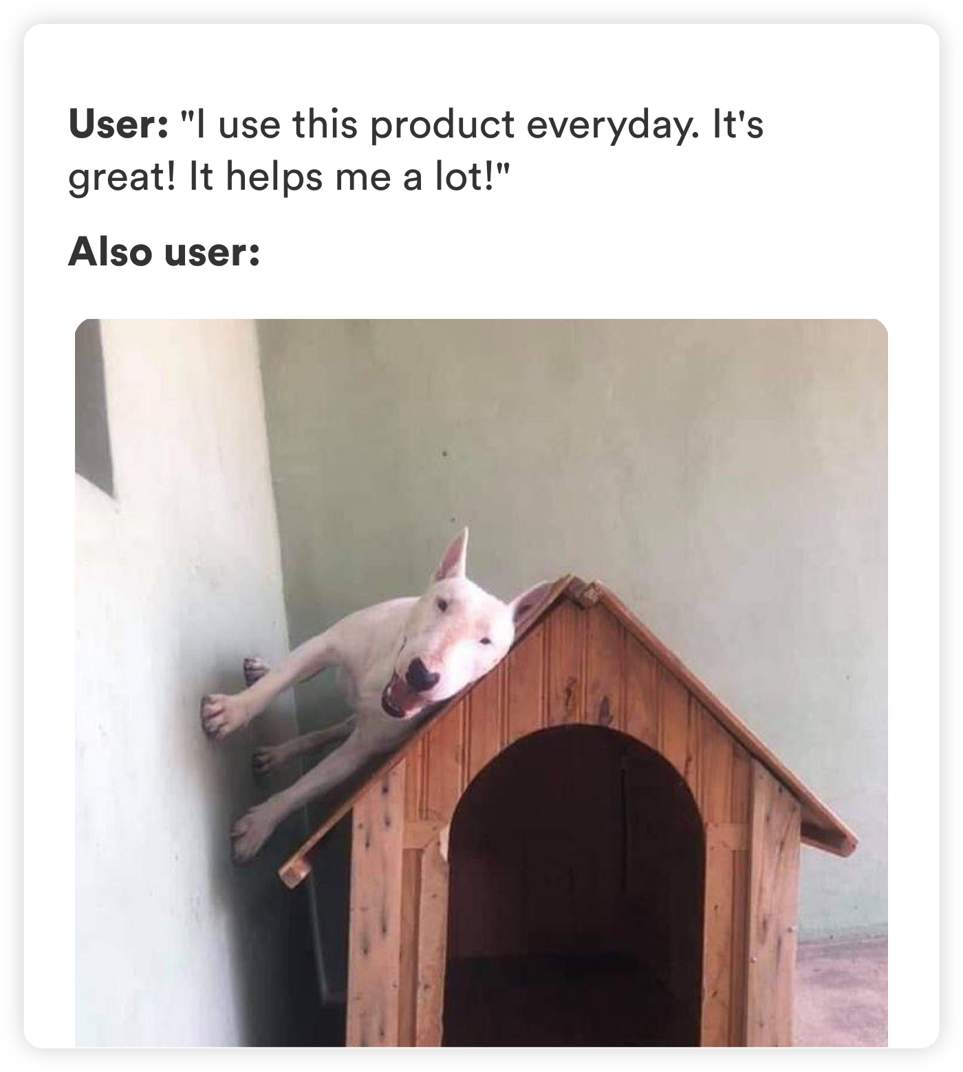 Picture of a dog lying on the roof of his little house.
