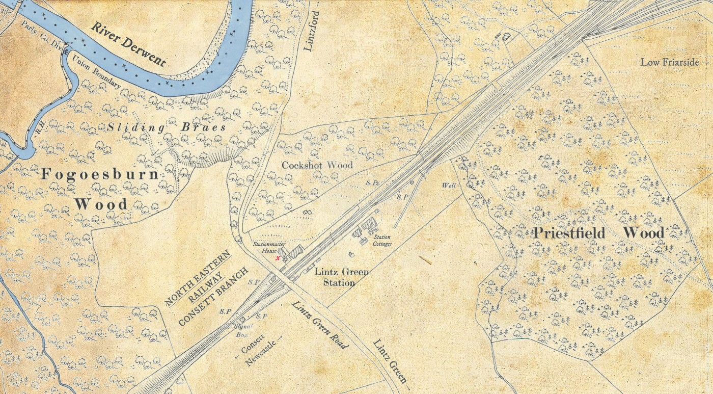 "Lintz Green map, c.1911, where ""X"" marks the murder scene, Paul Brown"