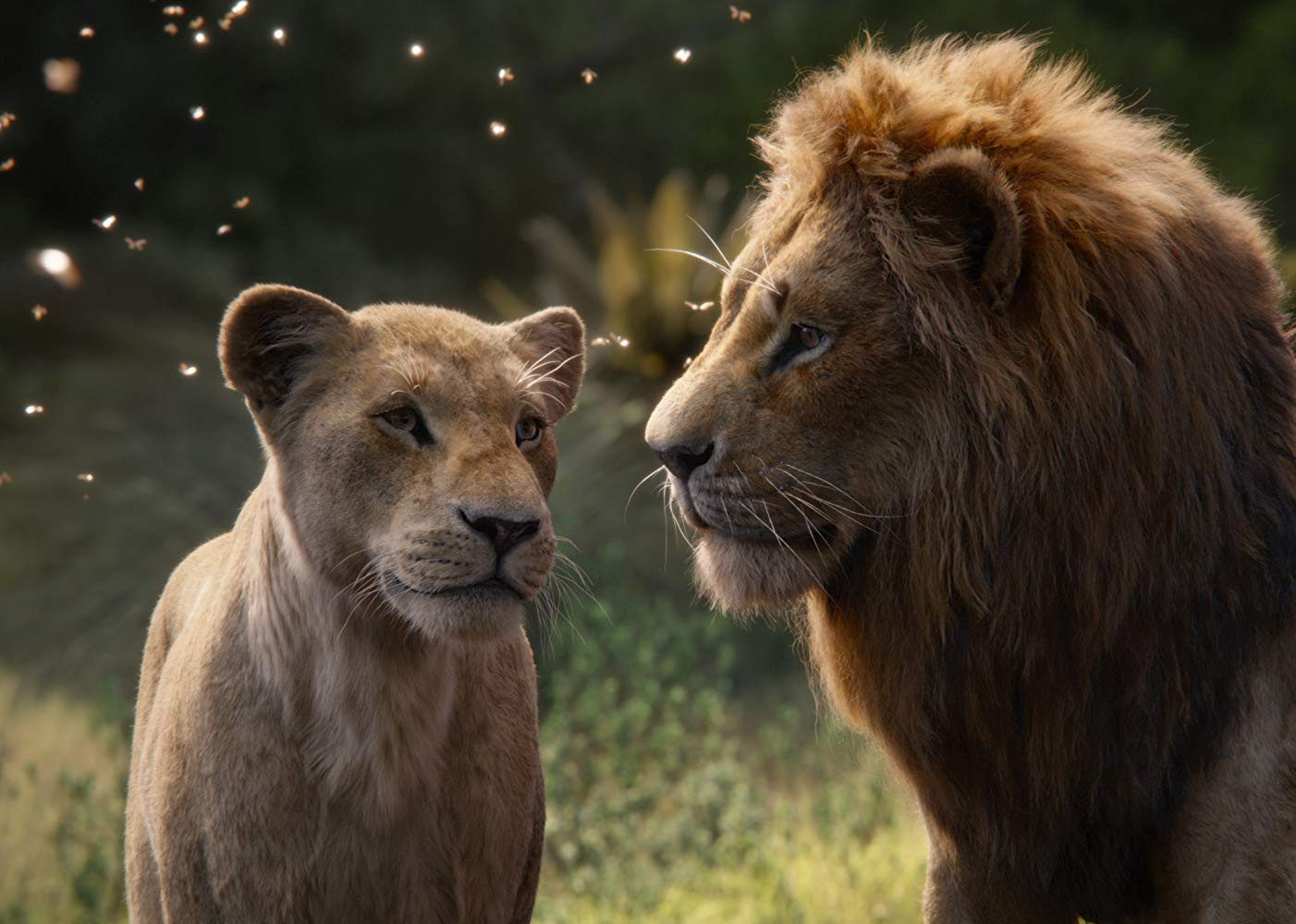 The Lion King 2019 Release Date The Lion King 2019