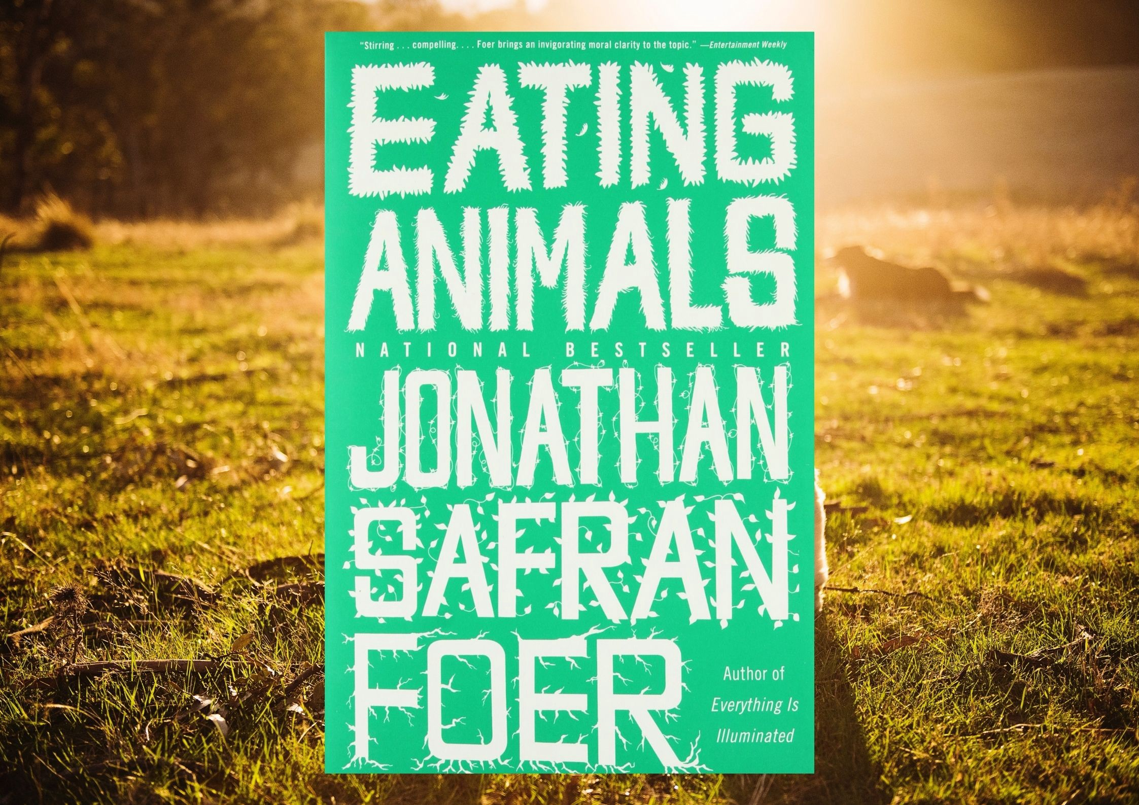 Food Ethics and the Horrors of Factory Farming