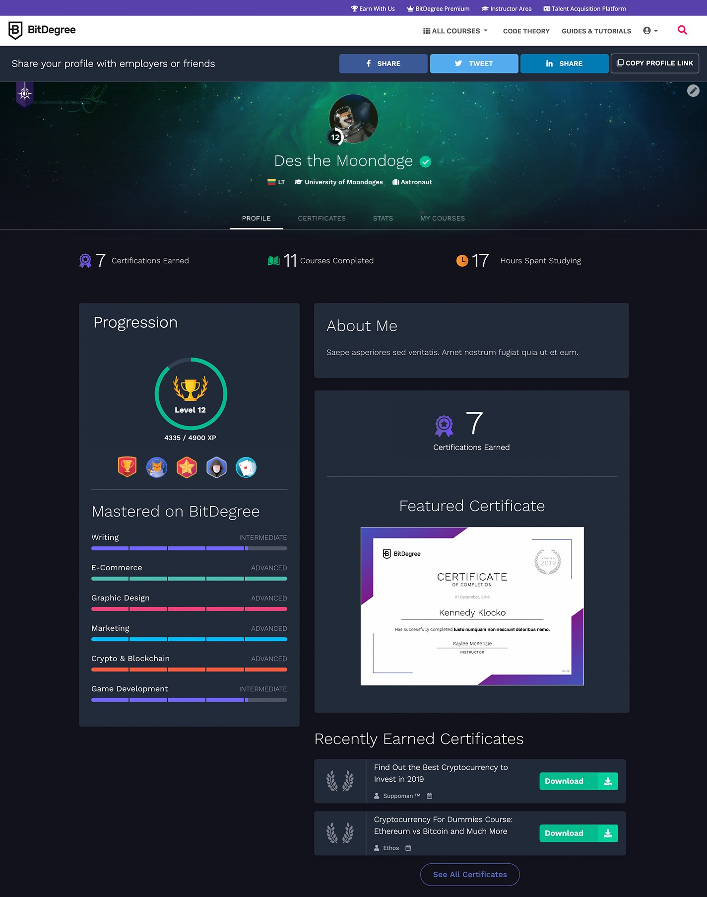 bitdegree user profile