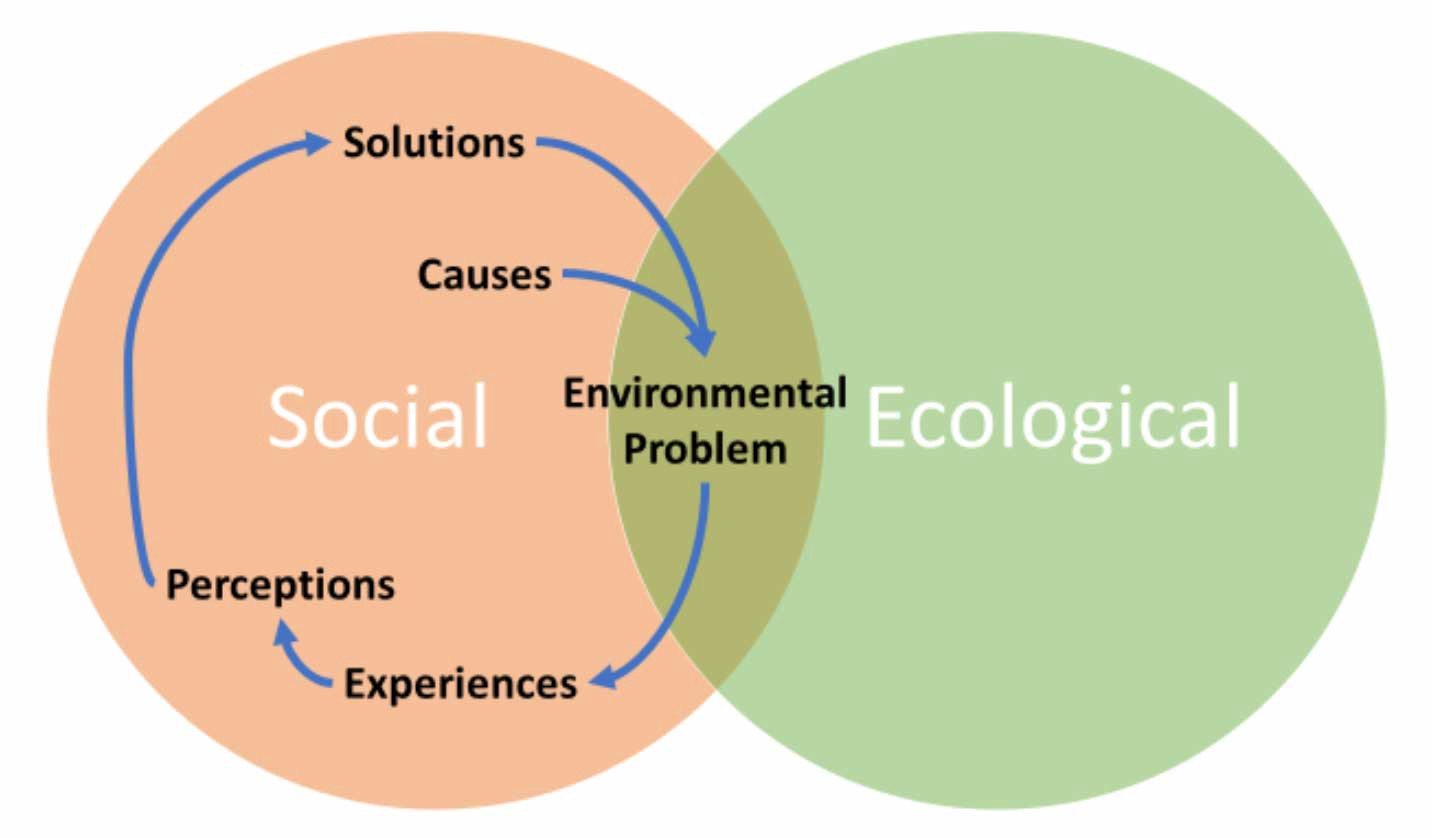 """Venn diagram showing a social circle overlapping an ecologicial circle. The overlap is labelled """"environmental problems""""."""