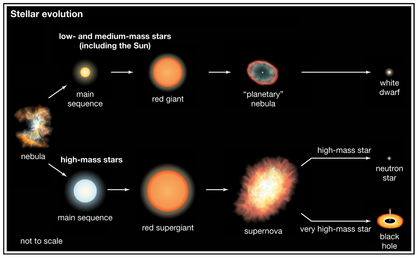 A succinct overview of the different paths of stellar evolution.