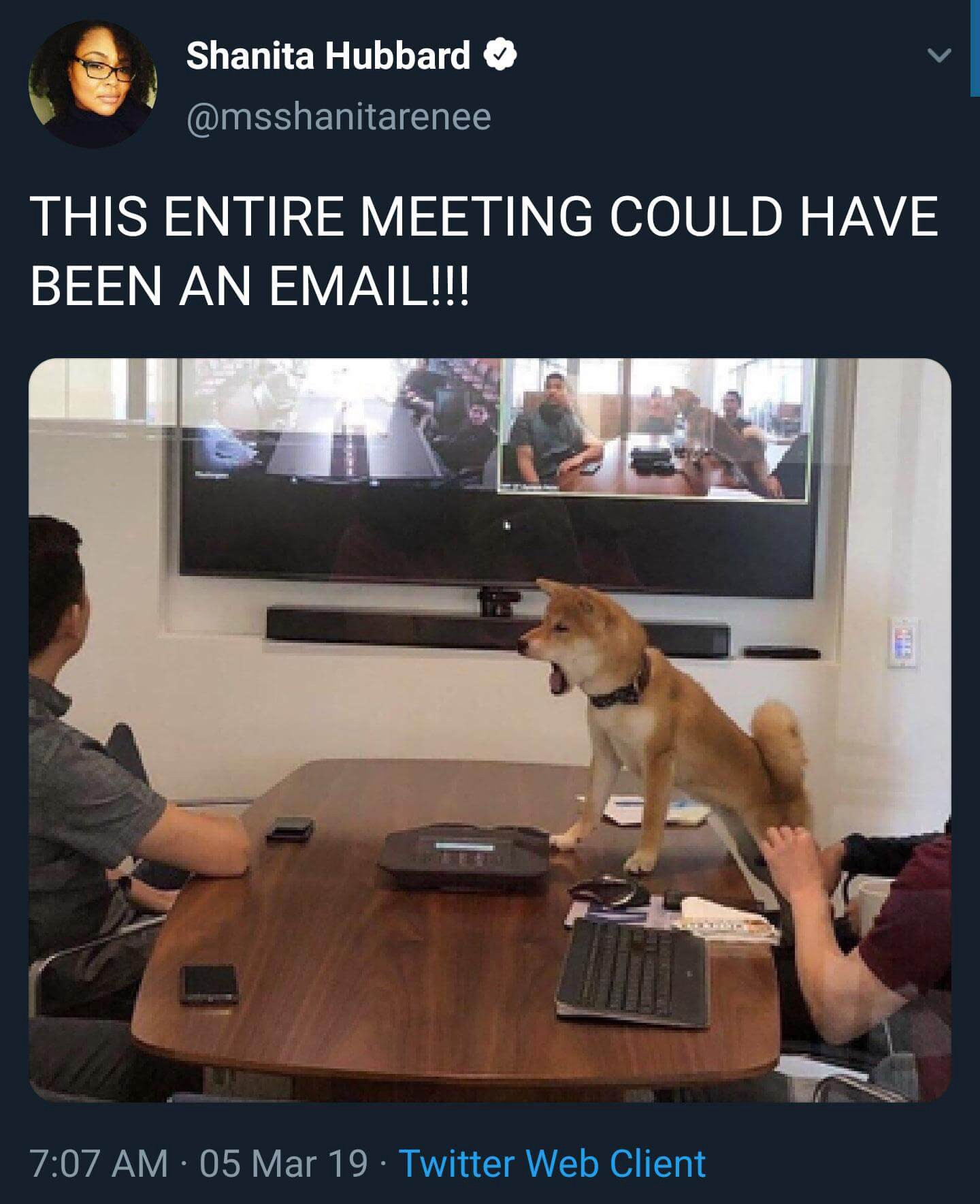 Meeting could have been an email