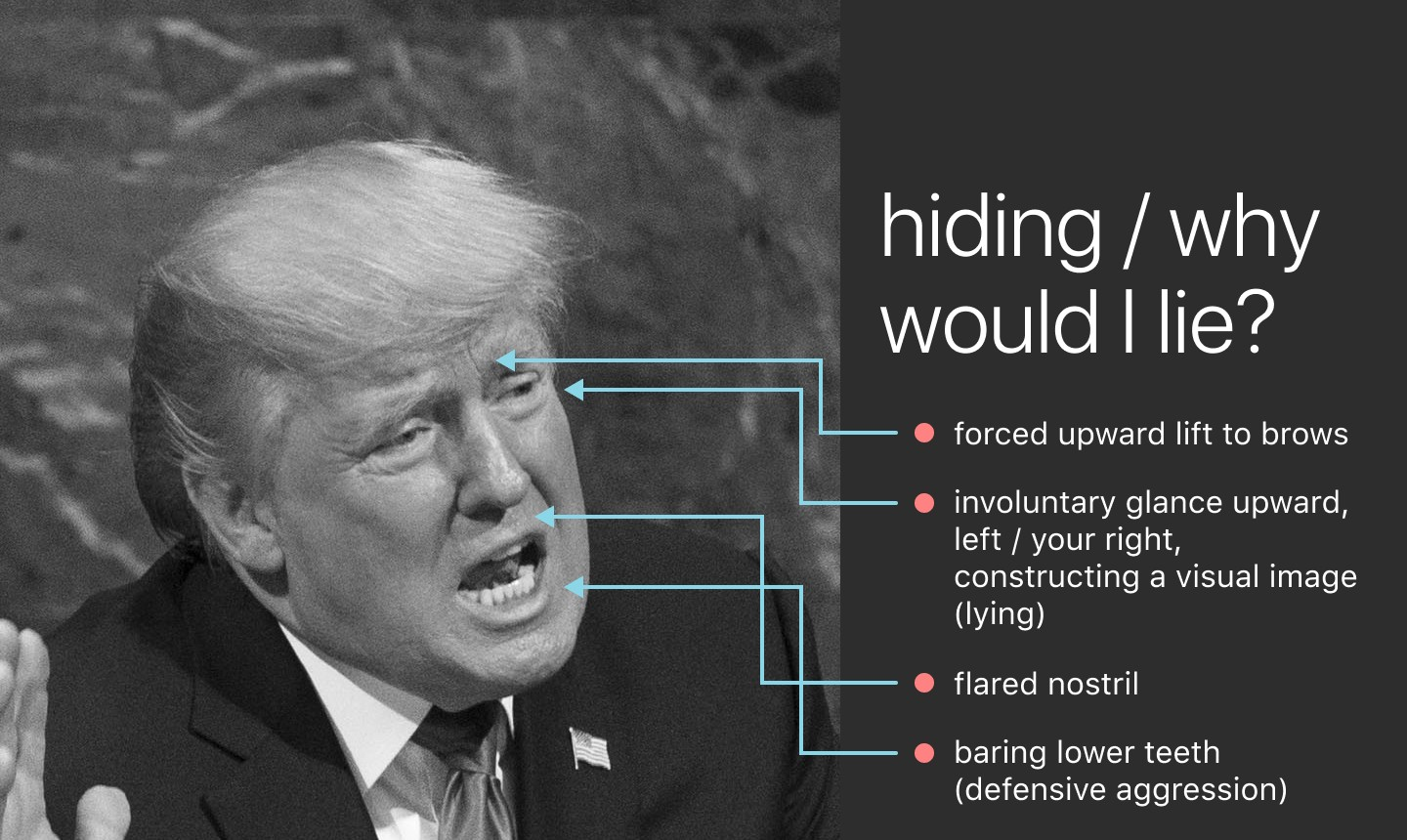 Trump's face, lines indicating: • involuntary glance upward, left (lying) • flared nostril • baring lower teeth (aggression)