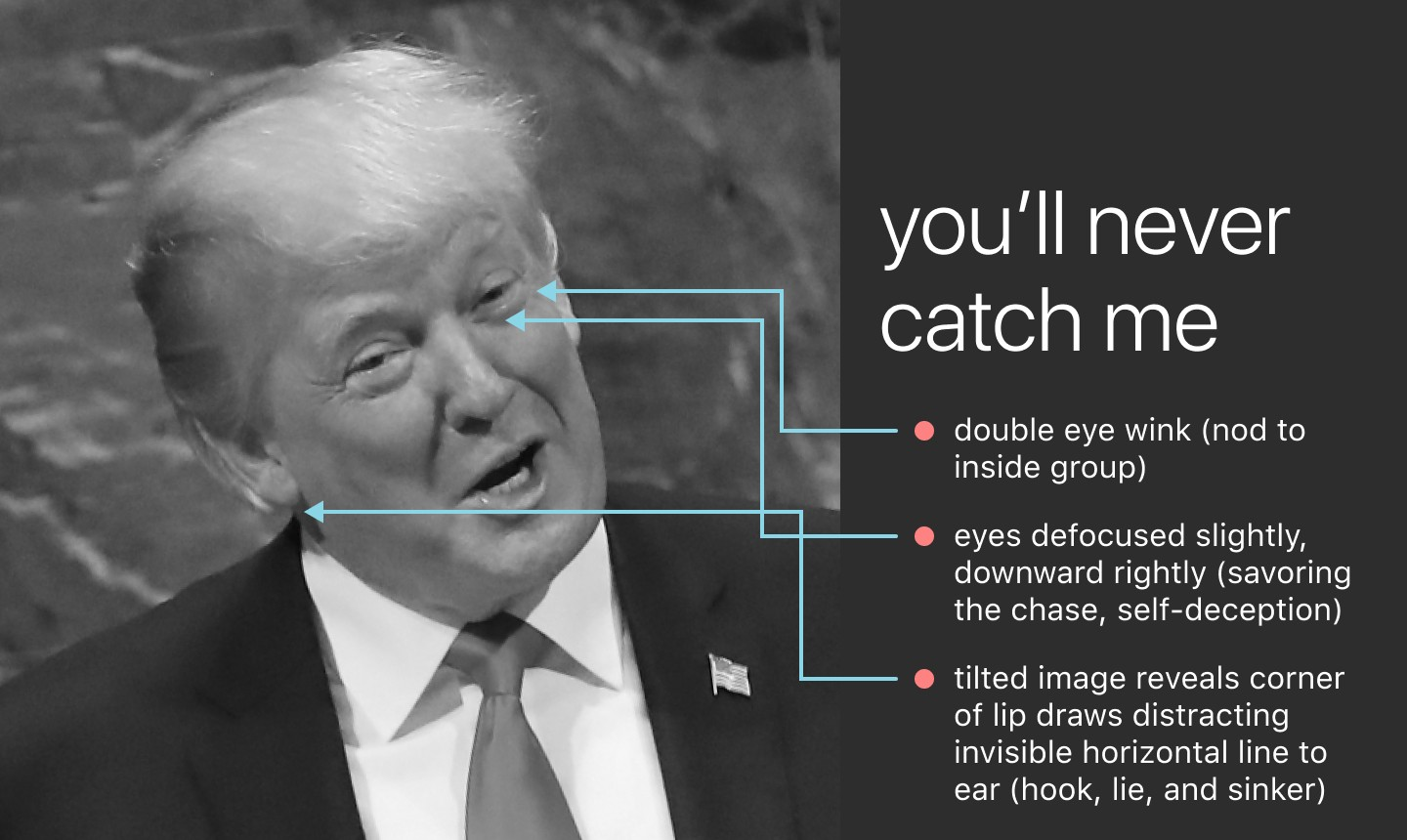 Trump's face with lines indicating: • double wink (nod to inside group) • eyes focused slightly, downward rightly (deception)