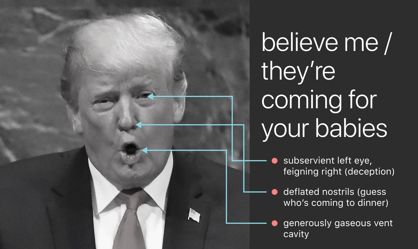 Trump's face. Lines drawn to show: • subservient left eye, feigning right (deception) • generously gaseous vent cavity